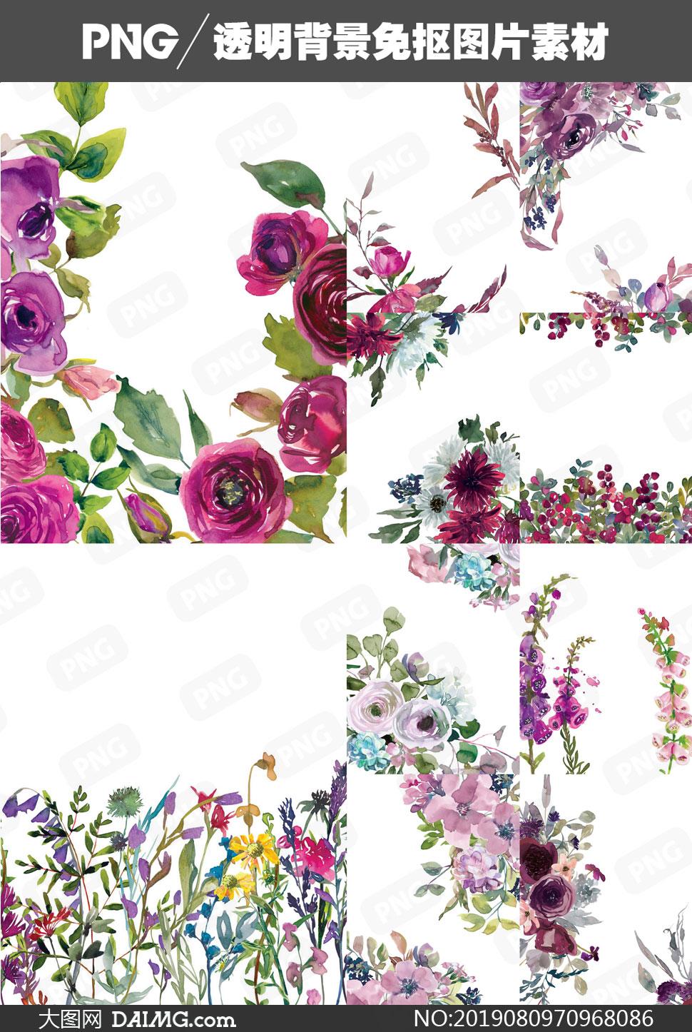 水彩花卉植物裝飾元素免摳圖片素材