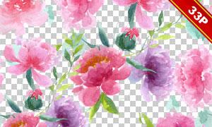 花朵元素与无缝牡丹花背景免抠图片