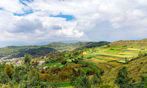 蓝天白云下的青藏高原田园摄影图片