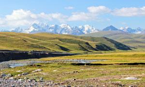 雪山下的新疆独库公路摄影图片
