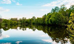 蓝天下美丽的湖泊和树木摄影图片