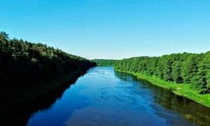 蓝天下森林中的河流摄影图片