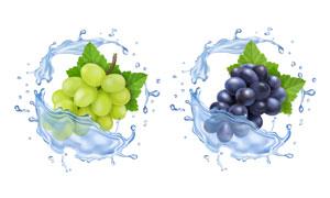 水花喷溅效果质感葡萄主题矢量素材