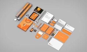 工作证等企业品牌视觉元素样机模板