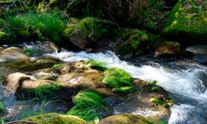 岩石中的小溪流水摄影图片