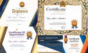 多种多样的授权书与证书等素材V118