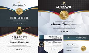 多种多样的授权书与证书等素材V122