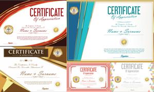 多种多样的授权书与证书等素材V127