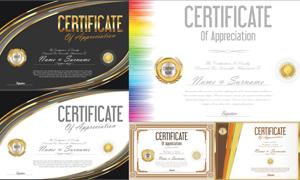 多种多样的授权书与证书等素材V128