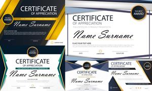 多种多样的授权书与证书等素材V142