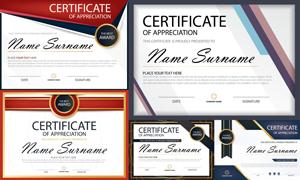 多种多样的授权书与证书等素材V143