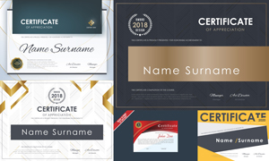 多种多样的授权书与证书等素材V150