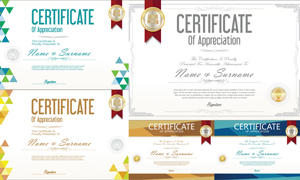 多种多样的授权书与证书等素材V153