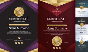 多种多样的授权书与证书等素材V161