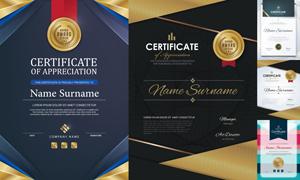 多种多样的授权书与证书等素材V162