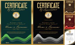 多种多样的授权书与证书等素材V166