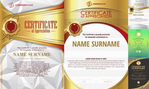 多种多样的授权书与证书等素材V167