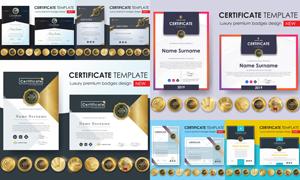 多种多样的授权书与证书等素材V177