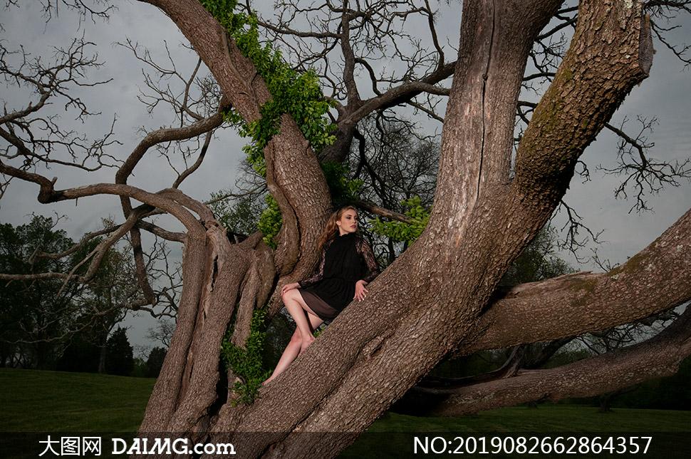 百年大树上的美女人物摄影原片素材