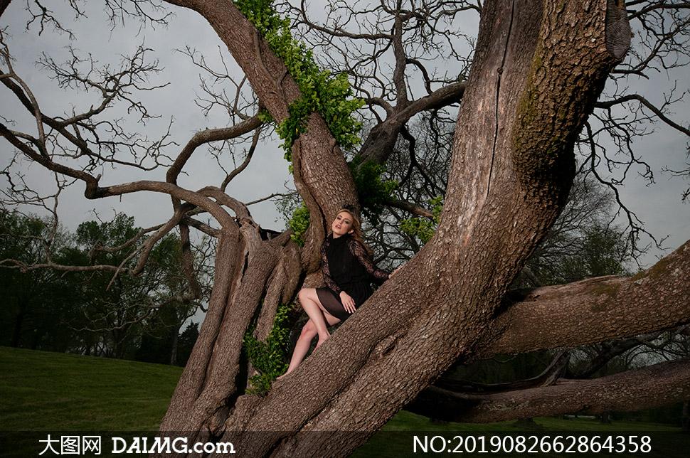 在树上的赤脚黑裙美女摄影原片素材