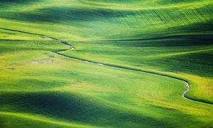 绿色草原上弯曲的小河摄影图片