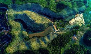 美丽的山林和梯田航拍图摄影图片