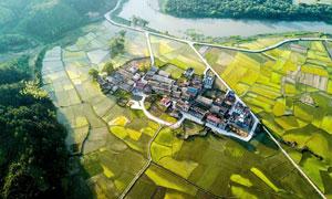 村镇和农作物航拍图摄影图片