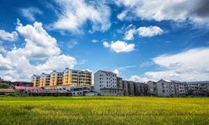 蓝天白云下的新农村和农田摄影图片