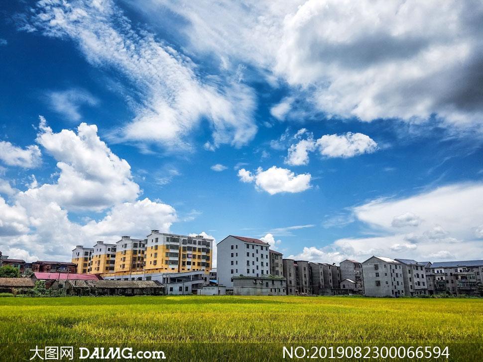 藍天白云下的新農村和農田攝影圖片