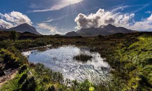 阳光下的野外水塘摄影图片