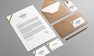 纸张信封与名片吊牌标签等样机模板