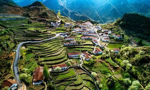 山坡上的乡村和梯田摄影图片