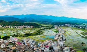 美丽的县城和田园农作物摄影图片