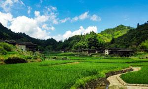 蓝天白云下的乡村美景摄影图片