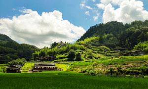 美丽的山村和农田旅游摄影图片