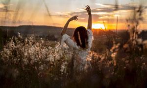 夕陽下花叢中翩翩起舞的美女攝影圖片