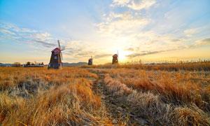 秋季夕阳下美丽的风车美景摄影图片