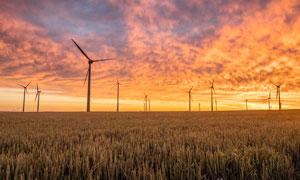 黄昏下农田中的风车美景摄影图片