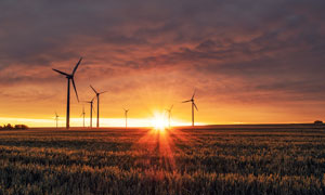 夕陽下農田中的風車群攝影圖片