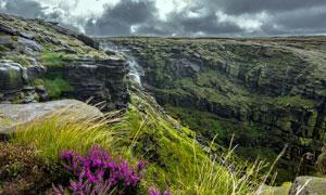 悬崖上的小溪瀑布和野花摄影图片
