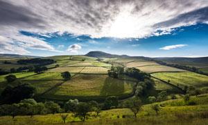 蓝天白云下的田园风光摄影图片
