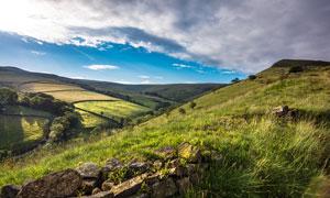 山坡草丛和田园风光摄影图片