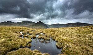 乌云密布下的沼泽地摄影图片
