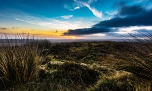 夕阳下的草原美景高清摄影图片