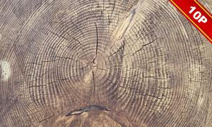木頭上開裂的年輪背景攝影高清圖片