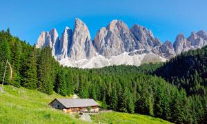高山森林中的房屋高清摄影图片