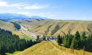 山顶美丽的森林美景高清摄影图片