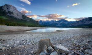 山间湖泊的木桩高清摄影图片