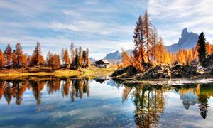 秋季湖边美丽的树林和房屋摄影图片