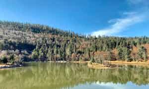 普达措国家森林公园湖泊美景摄影图片